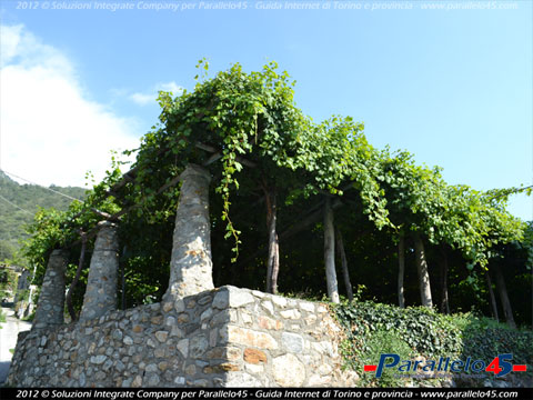 Carema (TO): Vigneti