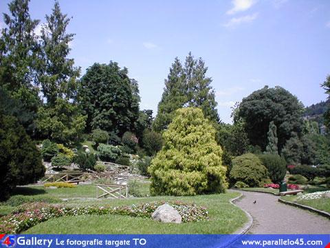 Torino giardino roccioso parallelo45 gallery torino e - Il giardino roccioso ...